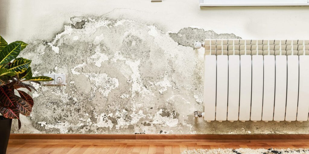 damp proofing bournemouth